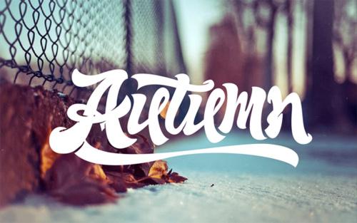 16-autumn
